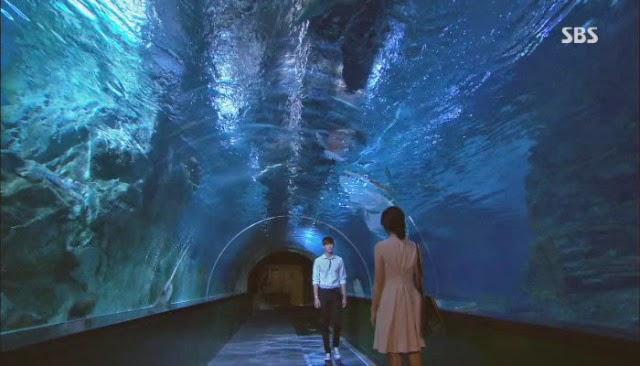 i hear your voice aquarium